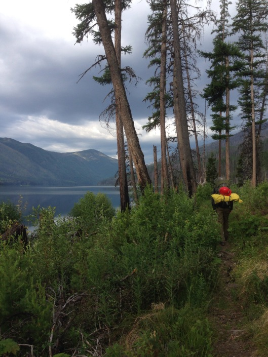 Hiking along Big Salmon Lake, clearing as we go!